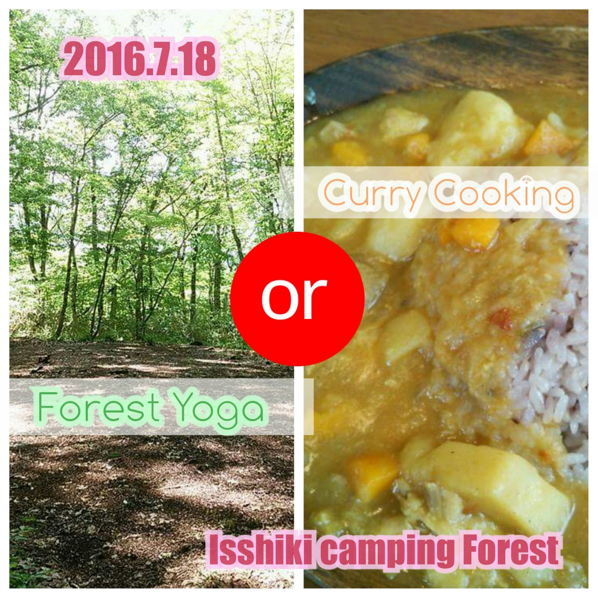 「Forest Yoga」or「Curry Cooking」