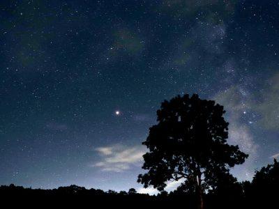 一色の森から見る星空☆